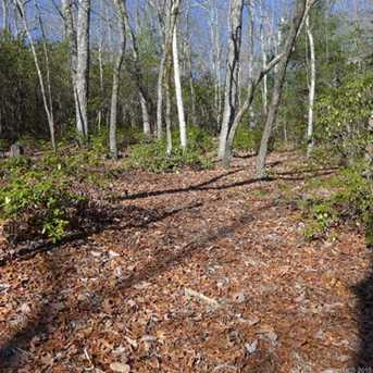 4 Lot Package Green Hollow Ln #105,106,116,117 - Photo 4