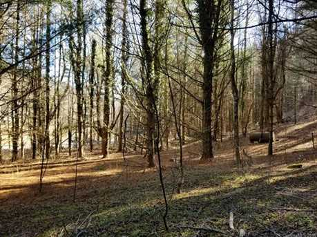 87.23 Acres Off Scronce Creek Road - Photo 16