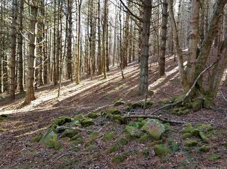 87.23 Acres Off Scronce Creek Road - Photo 12