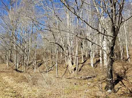 21.23 Acres Off Scronce Creek Road - Photo 4