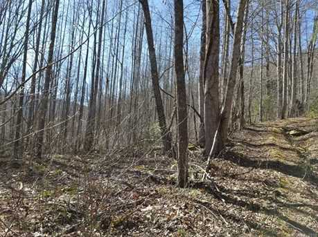 92 99 Acres Off Brush Creek Rd - Photo 12