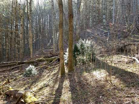 66 Acres Off Scronce Creek Road - Photo 16