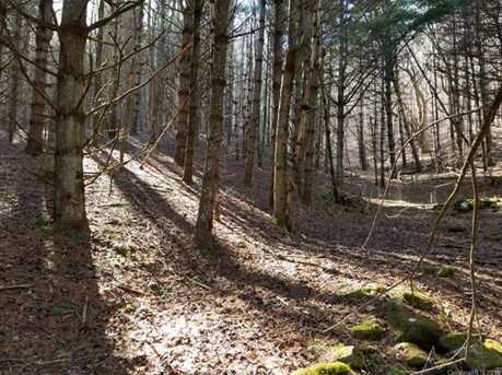 66 Acres Off Scronce Creek Road - Photo 34