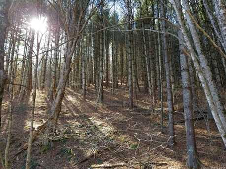 66 Acres Off Scronce Creek Road - Photo 26