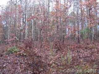 2 38 Acres Maybank Ln - Photo 8