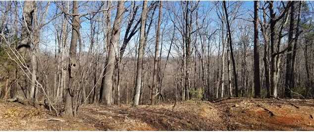 000 White Oak Mountain Road - Photo 10