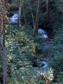 Lot 46 Abby Falls Dr - Photo 1