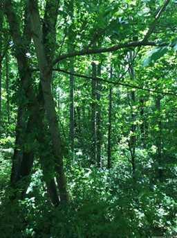 Tbd Dix Creek Two Rd - Photo 1