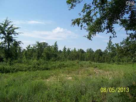 002 Dreher Shoals Road - Photo 1