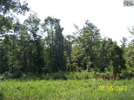002 Dreher Shoals Road - Photo 4