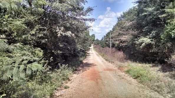 0 Rembert Church Road - Photo 4