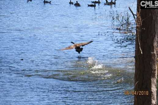 149 Lake Vista Dr - Photo 36