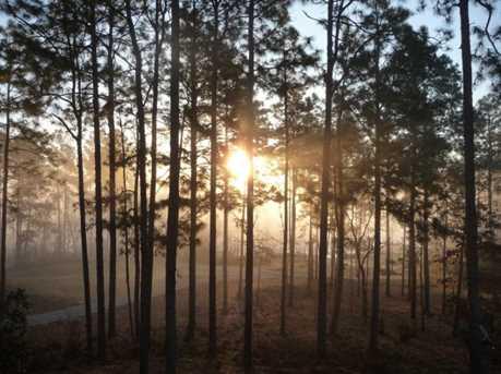 558 Forest Bluffs - Photo 6
