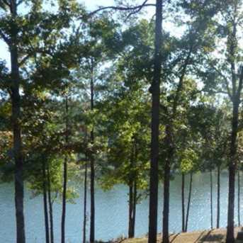 558 Forest Bluffs - Photo 1