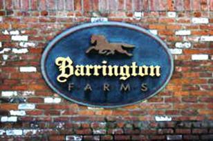Lot 3-6 Barrington Farms Drive - Photo 1