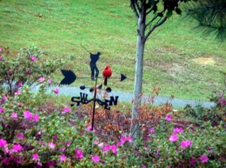 Lot 472 Spalding Lake Circle - Photo 6