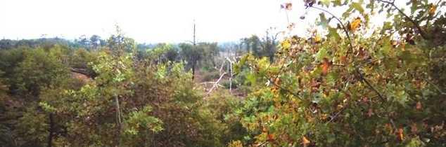 Lot 6  Kaanapali Ln - Photo 8