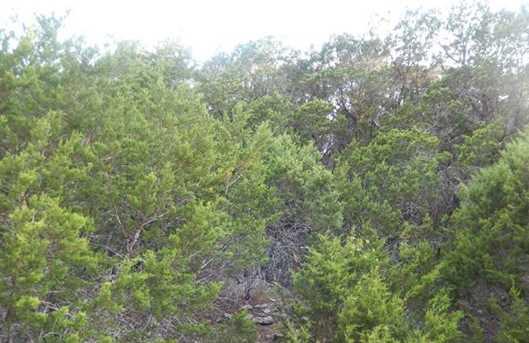 21005 Stone Cliff Dr - Photo 1