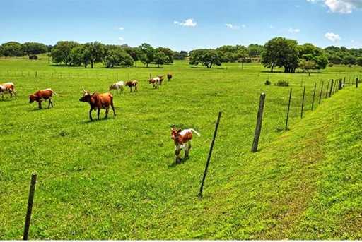 249  Ranchers Club Ln - Photo 26