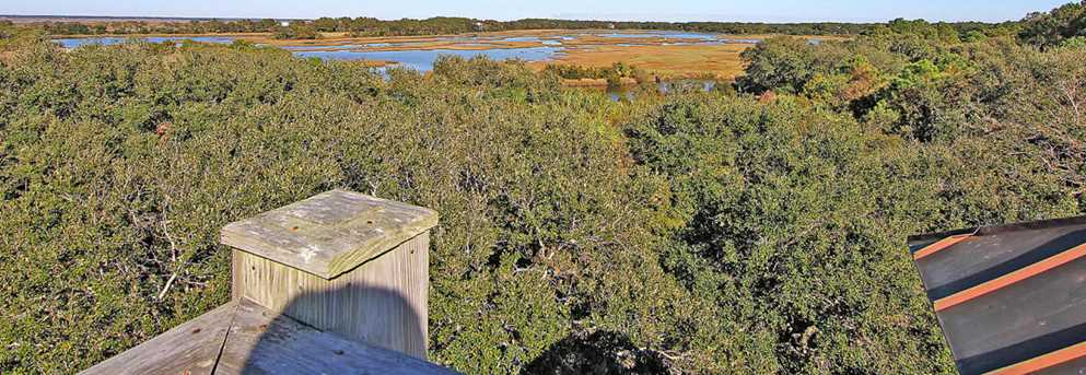 171 Dewees Inlet Drive - Photo 50