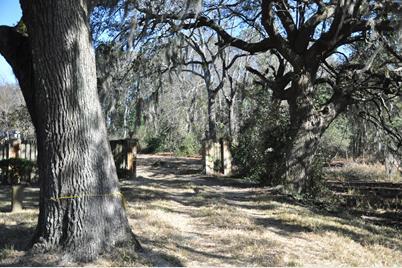 0 Dills Bluff Road - Photo 1