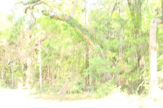 047 Chisolm Plantation Road - Photo 1