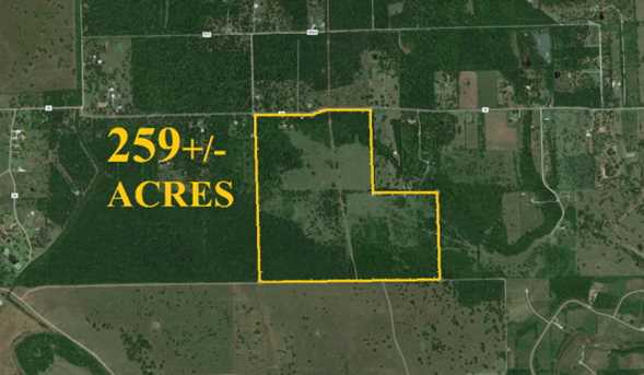1709 County Rd 36 (259+/- Acres) - Photo 1