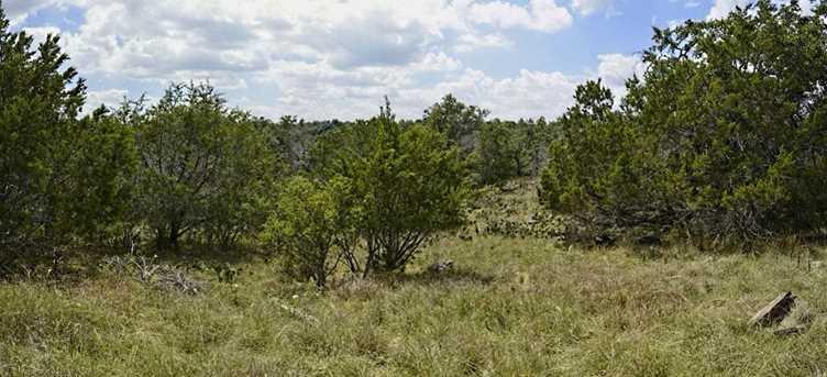 K4126 Mountain Dew - Photo 1