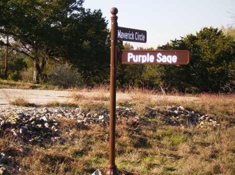 14143 Purple Sage/Maverick - Photo 6