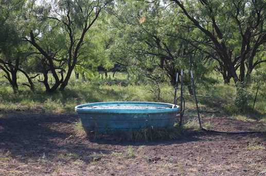 385 Acres Creek 116 - Photo 6