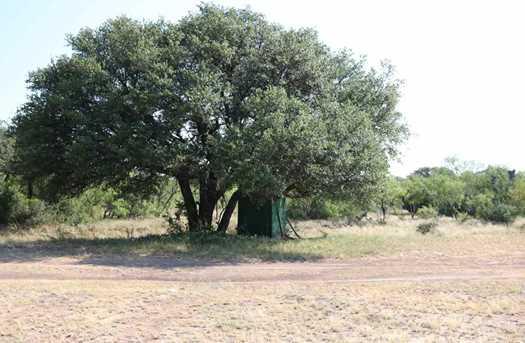 385 Acres Creek 116 - Photo 14