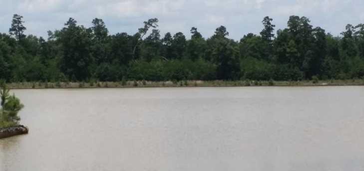 27461 S Lazy Meadow - Photo 4
