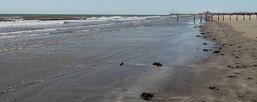 36 Grand Beach - Photo 10