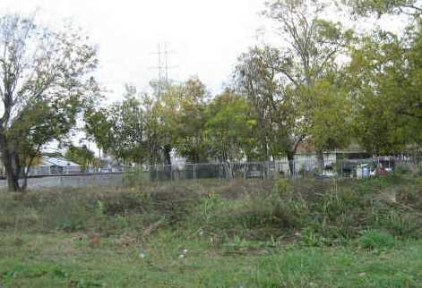 3317 McGowen Street - Photo 1