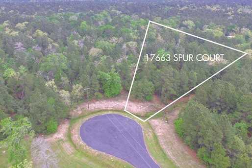 17663 Spur Court - Photo 1