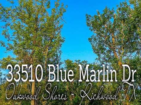 33510 Blue Marlin - Photo 1