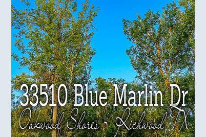 33510 Blue Marlin Drive - Photo 1
