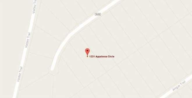 1231 Appaloosa Circle - Photo 4