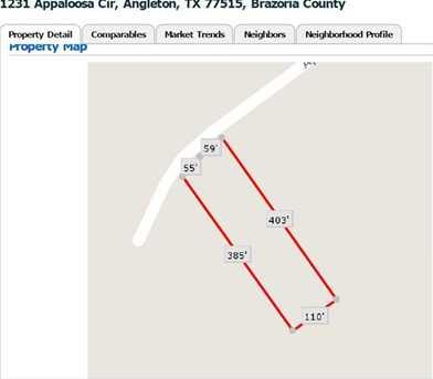 1231 Appaloosa Circle - Photo 1