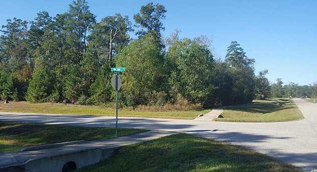 27439 Blue Cedar Lane - Photo 4