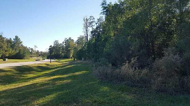 27439 Blue Cedar Lane - Photo 6