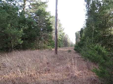 5 Ac County Road 2120 - Photo 8