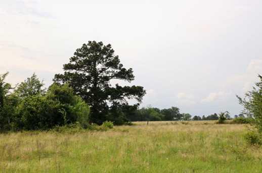 Tbd County Road 232 - Photo 16