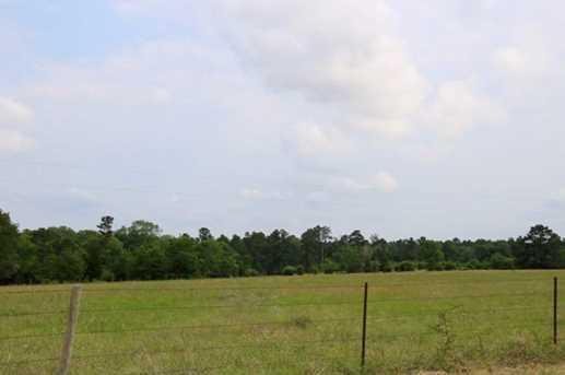 Tbd County Road 232 - Photo 8