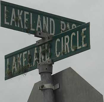 1202 Lakeland Circle - Photo 6