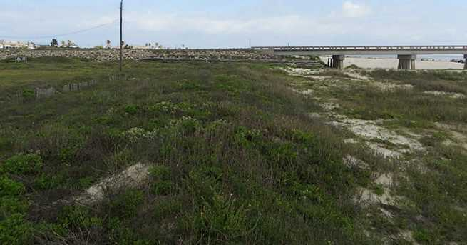 13238 Gulf Beach Drive - Photo 4