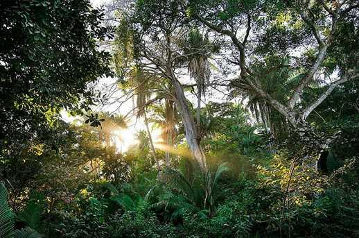 58 Punta Sayulita - Photo 10