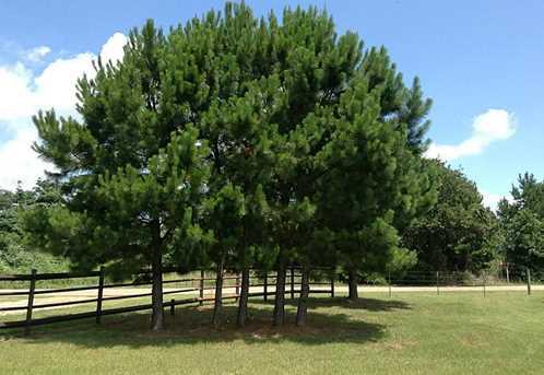 3406 County Road 430 - Photo 28