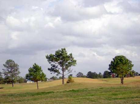 14510 Cypress Links Trail - Photo 1