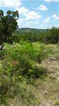 414 S Ridge - Photo 4